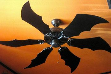 The real spin on keeping cool with ceiling fans
