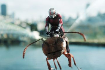 Don't Hold Your Breath For Ant-Man 3 - He Won't Be Back Until Next Year!