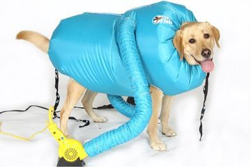 This Inflatable Jacket Vacuum Dries Your Dog When They're Wet, and OMG - This Is Coming Home With Me Now