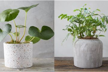 Anthropologie's Sister Brand, Terrain, Has Us Hooked With Its Summer-Ready Outdoor Planters