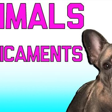 Animals In Predicaments Funny Animal Fails (March 2018) | FailArmy