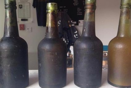 This ale is brewed from 133-year-old shipwrecked yeast